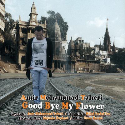 دانلود آهنگ جدید امیر محمد طاهری به نام خداحافظ گل من