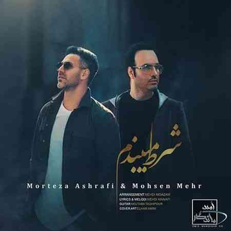 دانلود آهنگ جدید مرتضی اشرفی و محسن مهر به نام شرط میبندم